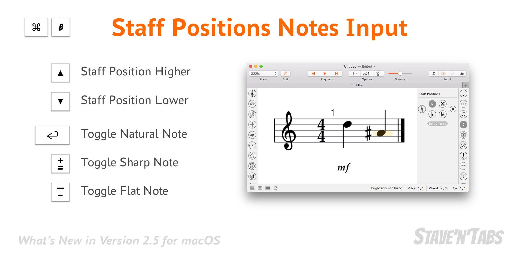 Stave'n'Tabs macOS 2.5: Staff Positions Notes Input